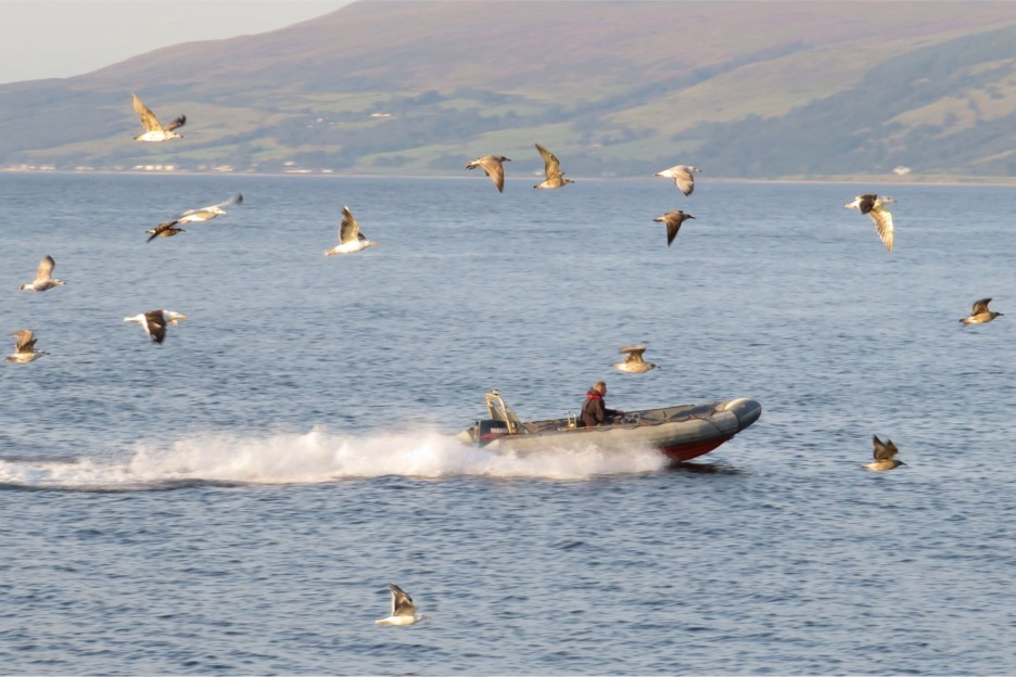 Rigid inflatable boat (RIB) in Scotland