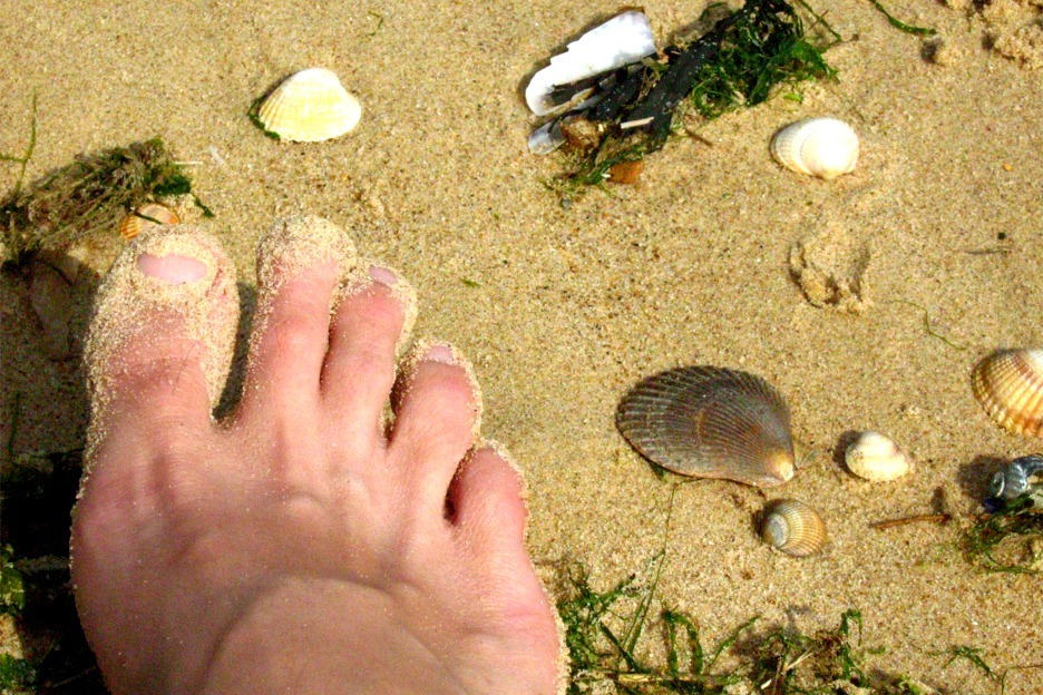 Bare foot on sandy beach