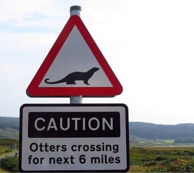 Otters crossing road sign